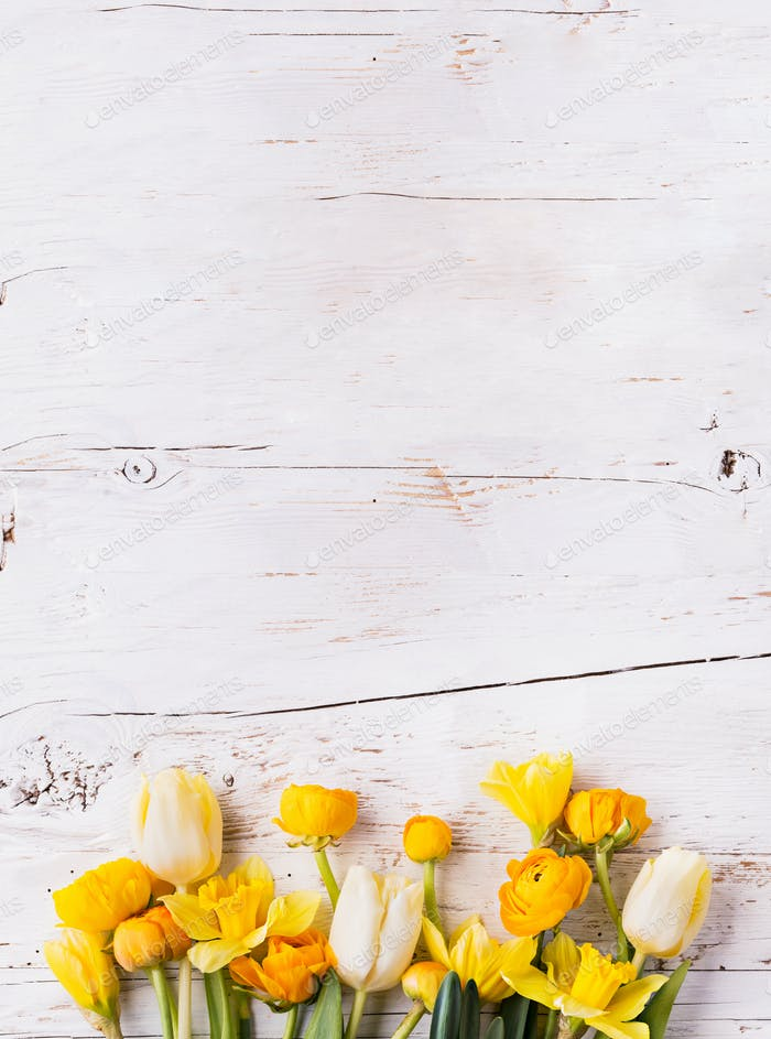 Yellow flowers on a white wooden background. Copy space.