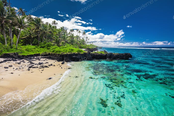 Tropical paradise with wild nature, palm trees and beach