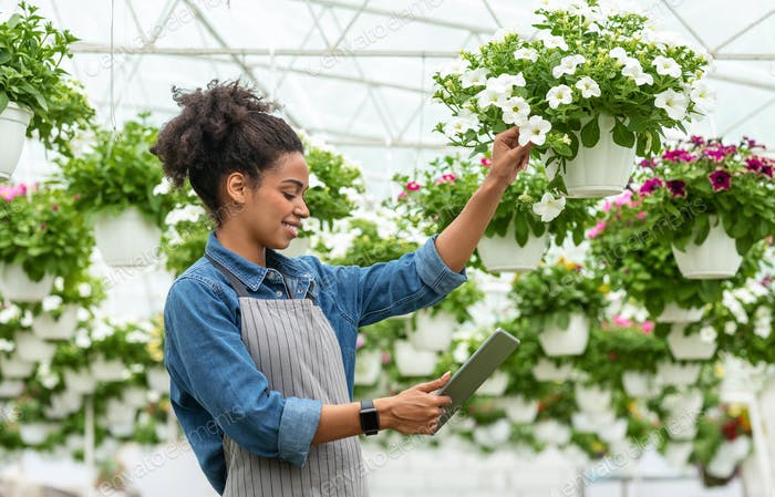Plant quality control and digital devices. Smiling african american woman checking flowers and