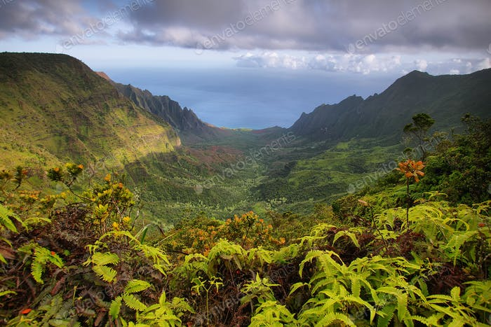 Majestic views of Napali coast from Kalalau lookout