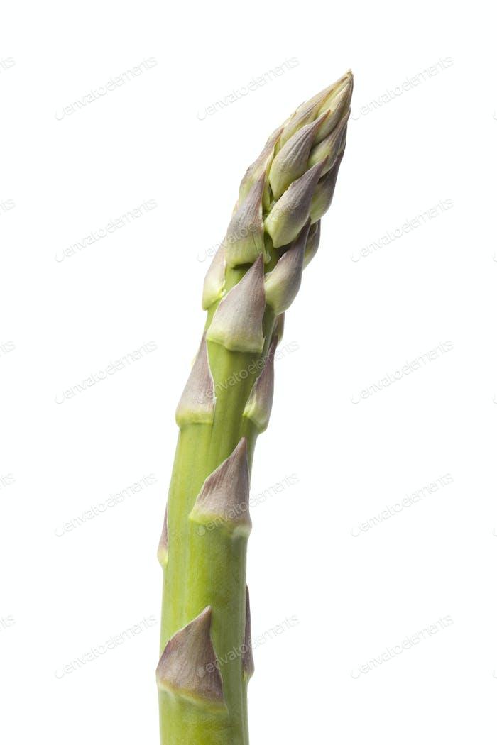 Fresh green Asparagus point close up