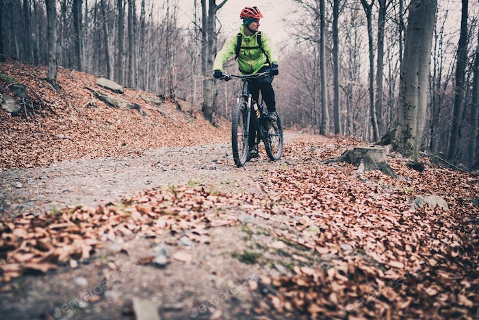 Mountain biker riding on trail in autumn woods