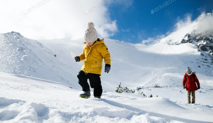 Father with small son walking in snow in winter nature, holiday concept