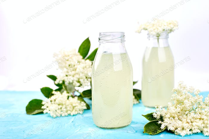 Kombucha tea with elderflower flower on blue background