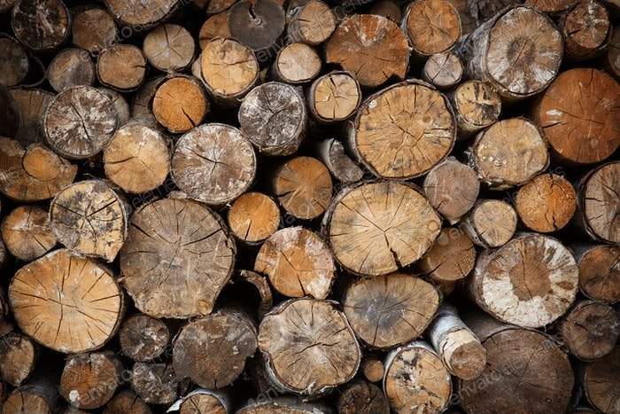 Cut firewood natural background