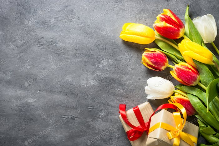 Holiday background with tulips and present.
