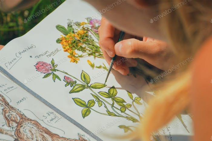 woman painter/artist painting a picture of a wildflower, outdoors