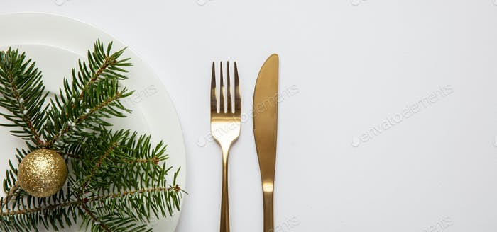 Fir tree twig on white set of dishes, white background