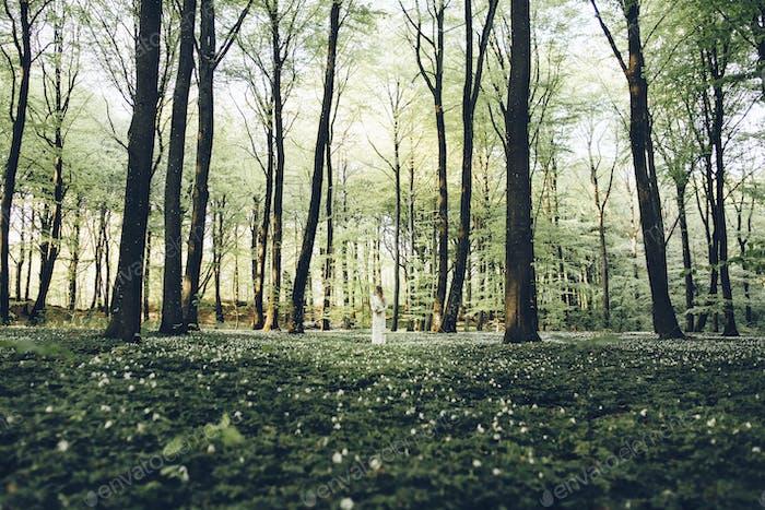Braut im Wald