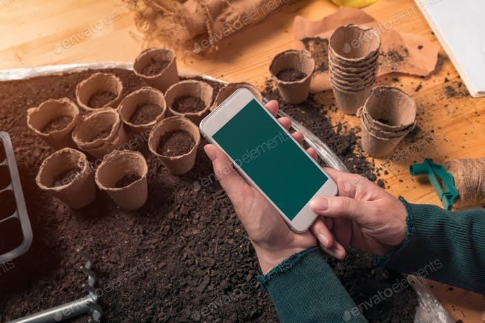 Smartphone mock up in hands of organic gardener