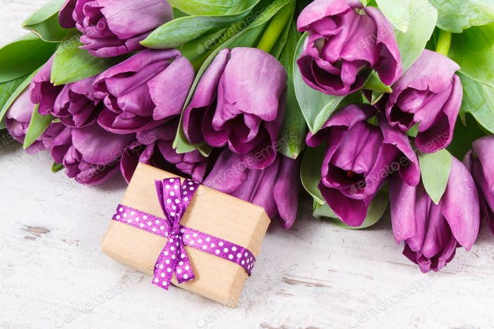Purple tulips and gift for different occasions