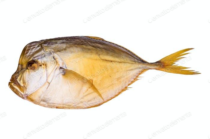 Smoked atlantic moonfish