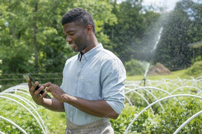 Ein Bio-Gartenbau-Gärtnerei und Bauernhof außerhalb von Woodstock. Ein Mann, der ein digitales Tablet benutzt.