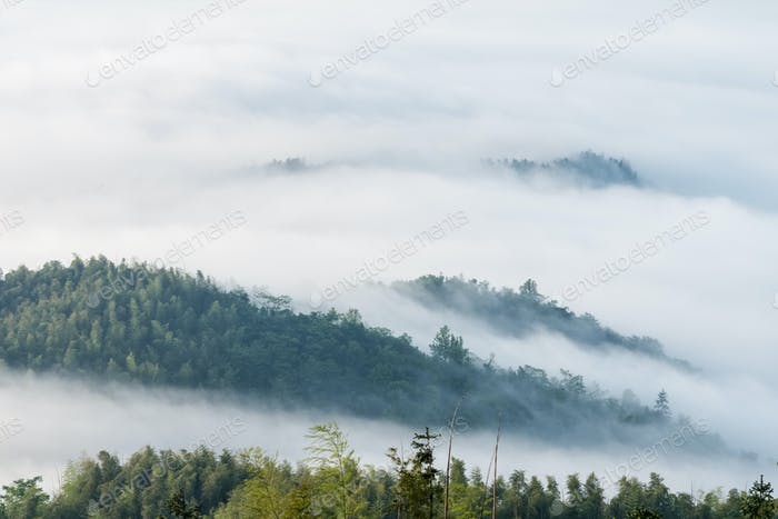 mountains covered with clouds fog