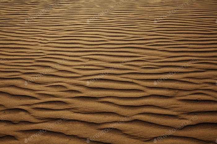 Texture background of wind pattern on sand dunes, full frame