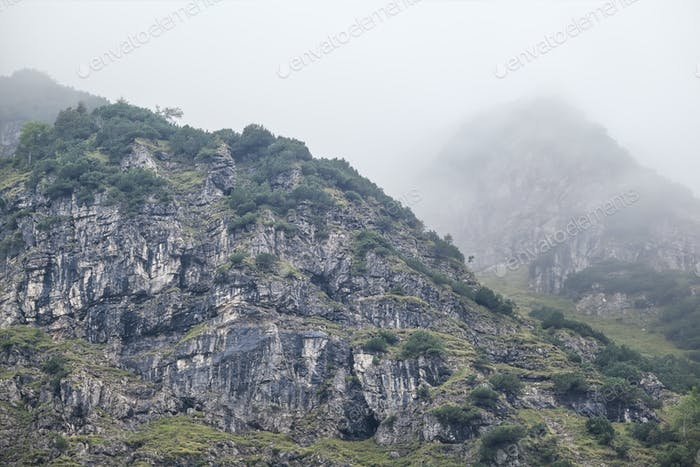rocks in dense autumn fog