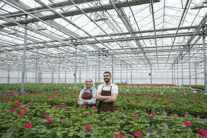 Cheerful man standing in greenhouse near mature woman