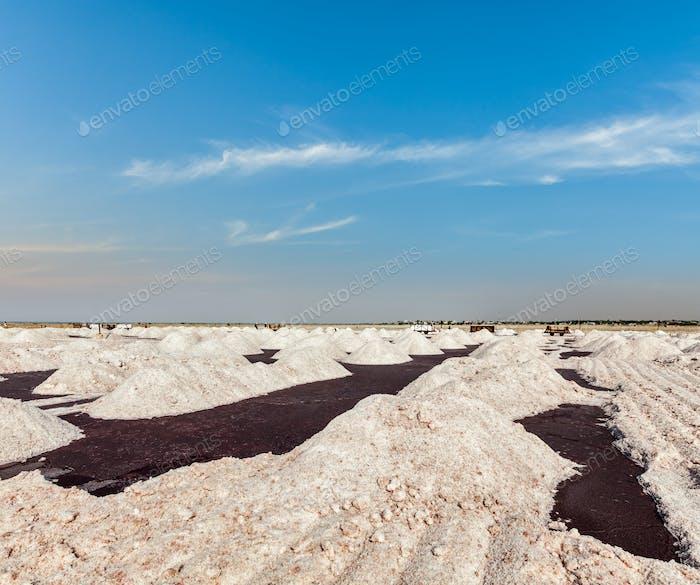 Salt mine at Sambhar Lake, Sambhar, Rajasthan, India