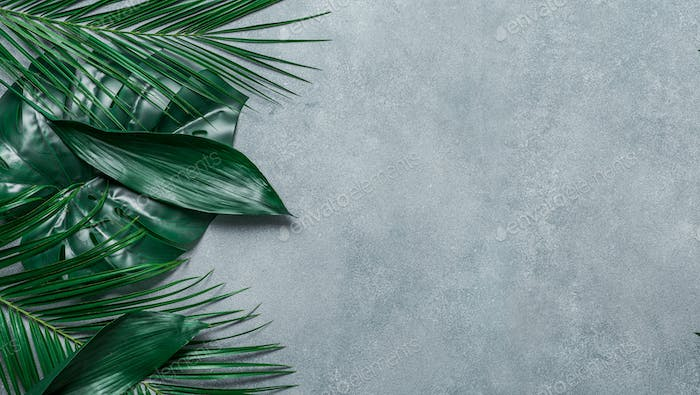 Tropical leaves on gray stone background, copy space