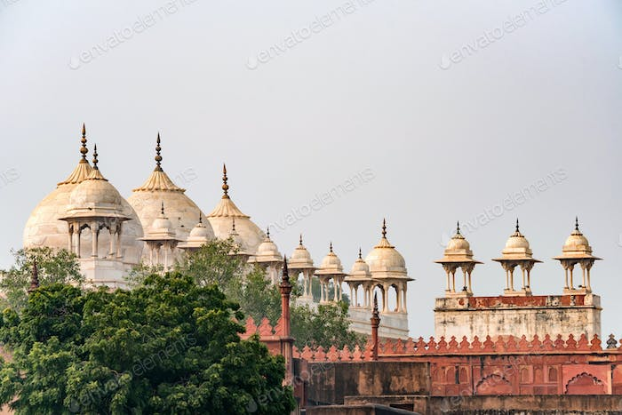 Moti Masjid or Pearl Mosque in Agra Fort, India
