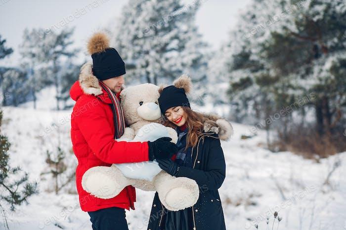 Liebevolles Paar zu Fuß in einem Winterpark