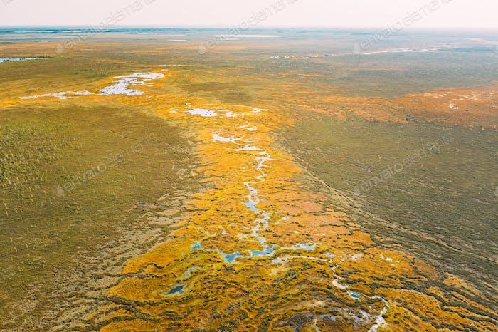 Miory District, Region Witebsk, Weißrussland. Der Yelnya-Sumpf. Upland und Transitional Moore mit