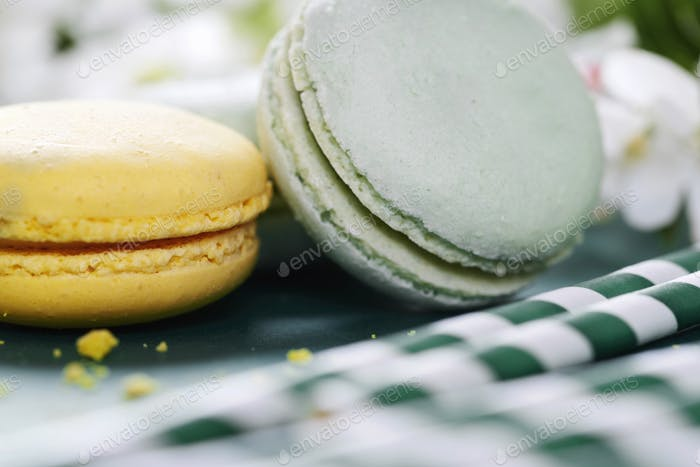 Variation of yummy macaroons