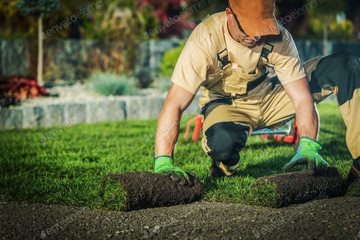 Professional Landscaper Job.