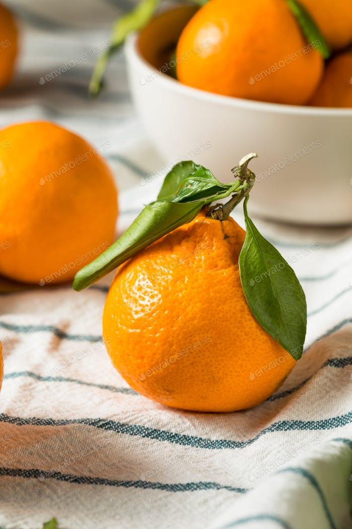 Raw Organic Mandarin Oranges