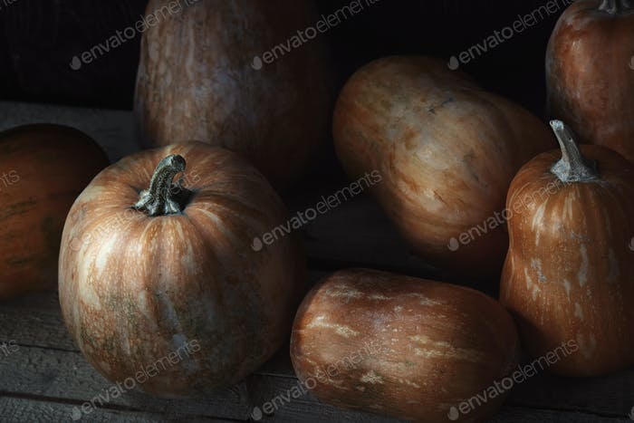Group of pumpkins on a wooden table