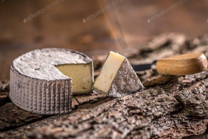 Camembert cheese slice