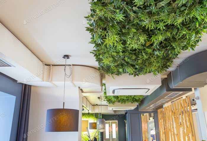 Decoration cafe or coffee shop interior style green eco