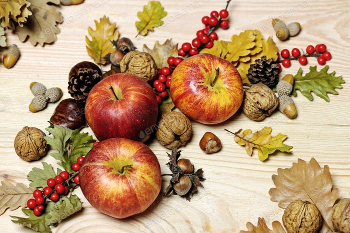 HerbstSammlung