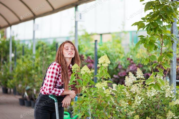 Садовник женщина с корзиной, выбирая растения в садовом центре