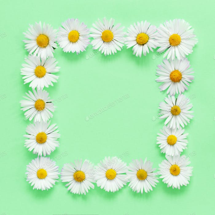 Rechteckiger Blumenrahmen auf hellgrünem Hintergrund