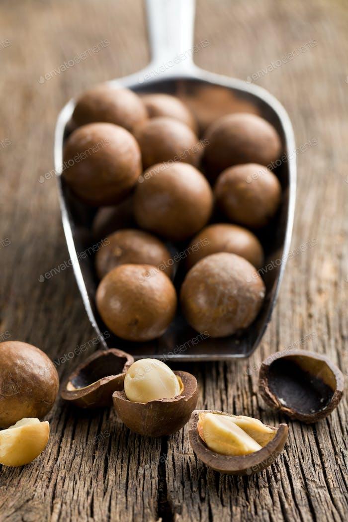 macadamia nuts on scoop