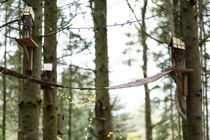 Wooden bird houses and fairy lights in a tree, decorations for a woodland ceremony