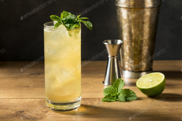 Refreshing Mint GinGin Mule Cocktail