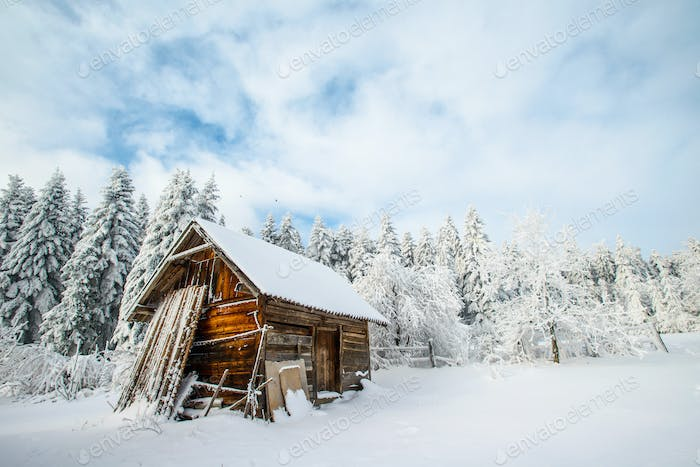 house in a winter