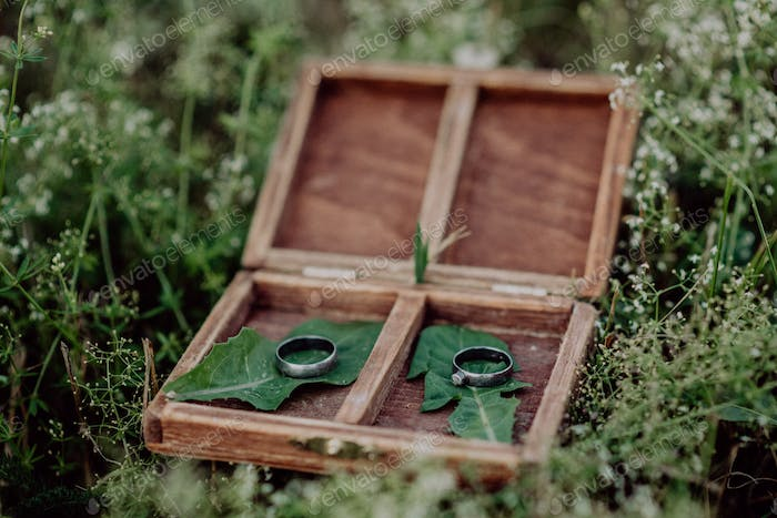 Wedding rings in a wooden box on grass.