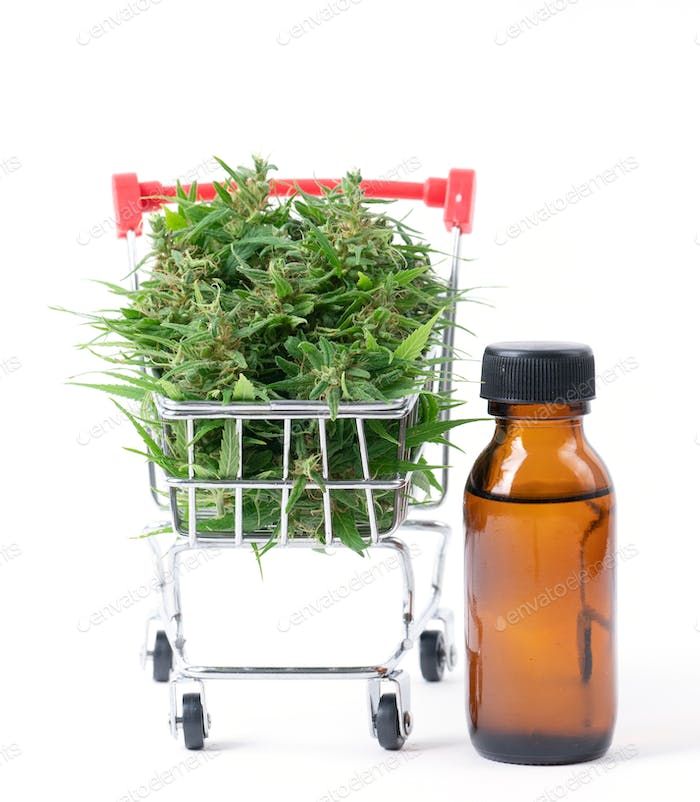 cannabis with cannabidiol (cbd) extract isolated on white background