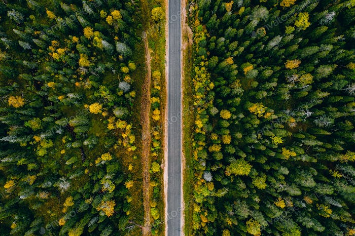 Aerial view of rural road and colorful autumn forest in Finland.