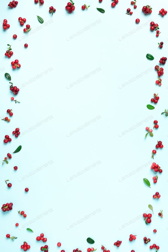 Wild lingonberry pattern on blue background. Top view. Summer berries texture.