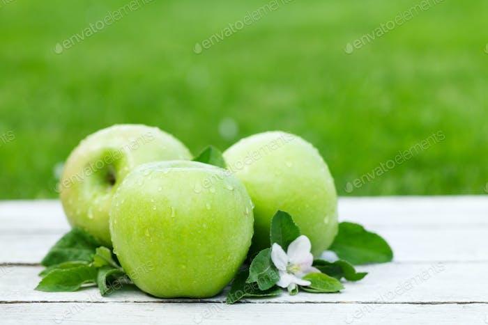 Frische Gartenäpfel