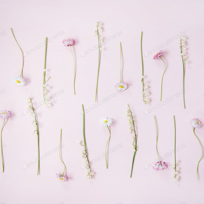 Flat-lay of lily of the valley and daisy flowers over pastel pink background, square crop