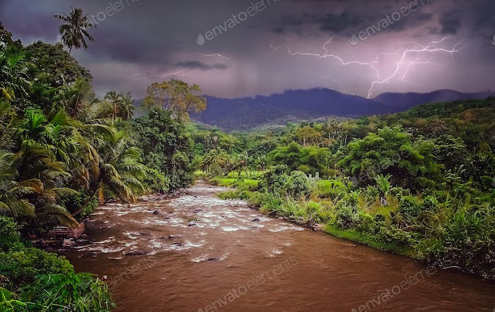 Jungle river in Indonesia