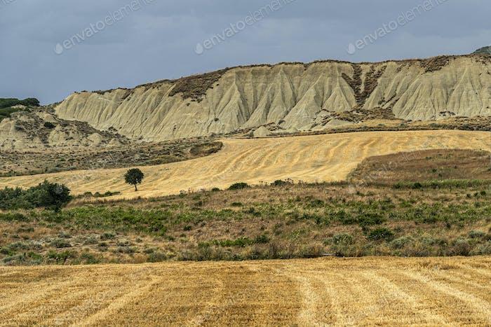 Rural landscape in Matera province at summer