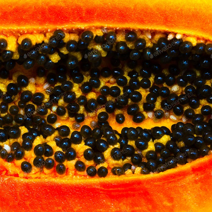Papaya Closeup Minimal food art