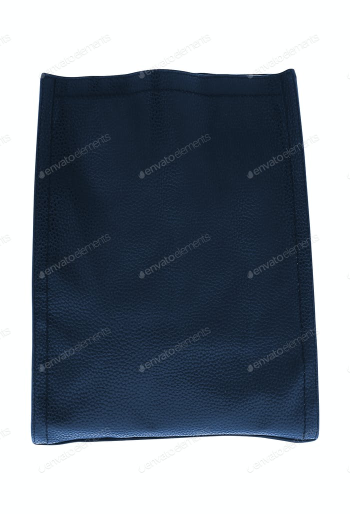 The Leather female handbag