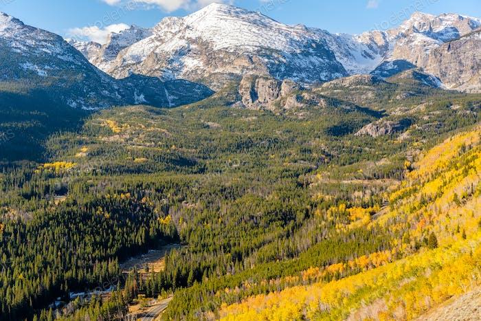 Aspenhain im Herbst in Rocky Mountains